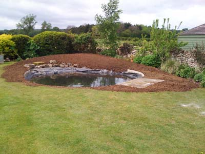 Finished Pond and Border edge